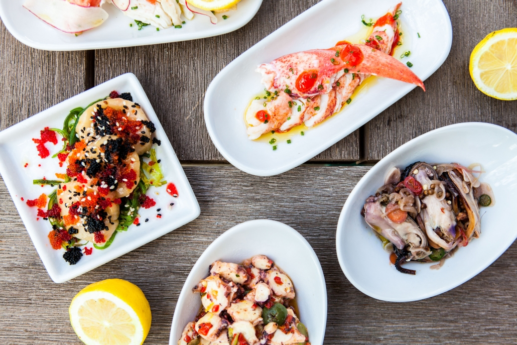 Aerial view of plates of seafood