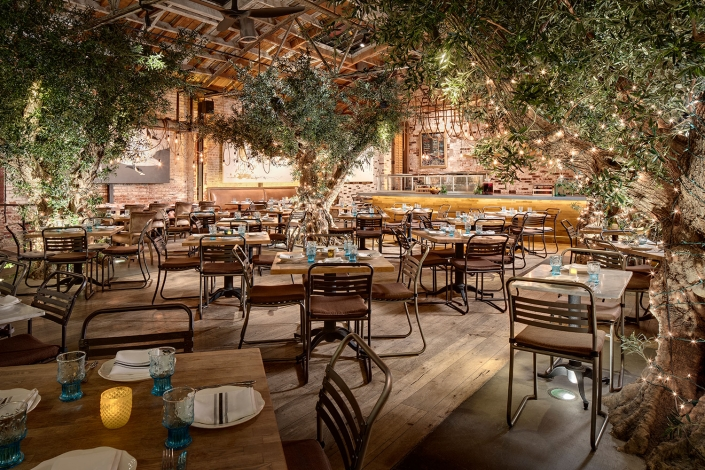 Dining area inside Herringbone Restaurant in La Jolla with Olive Trees